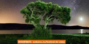 """Fundación Sandra Ibarra: festival para """"celebrar la vida"""""""